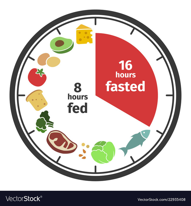 scheme-and-concept-of-intermittent-fasting-clock-vector-22935408-1573017675850533762125