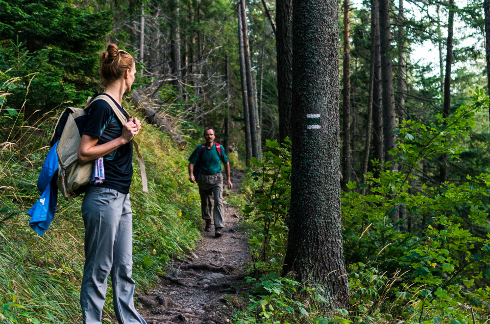 Hiking-Guide-Featured
